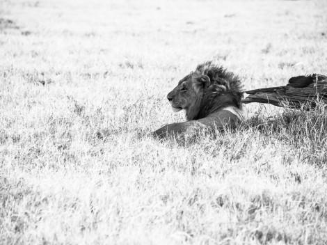Botswana-2012-10