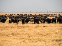 Botswana-2012-12
