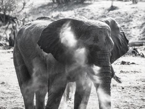 Botswana-2012-8