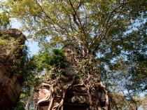 Cambodge-JN-10