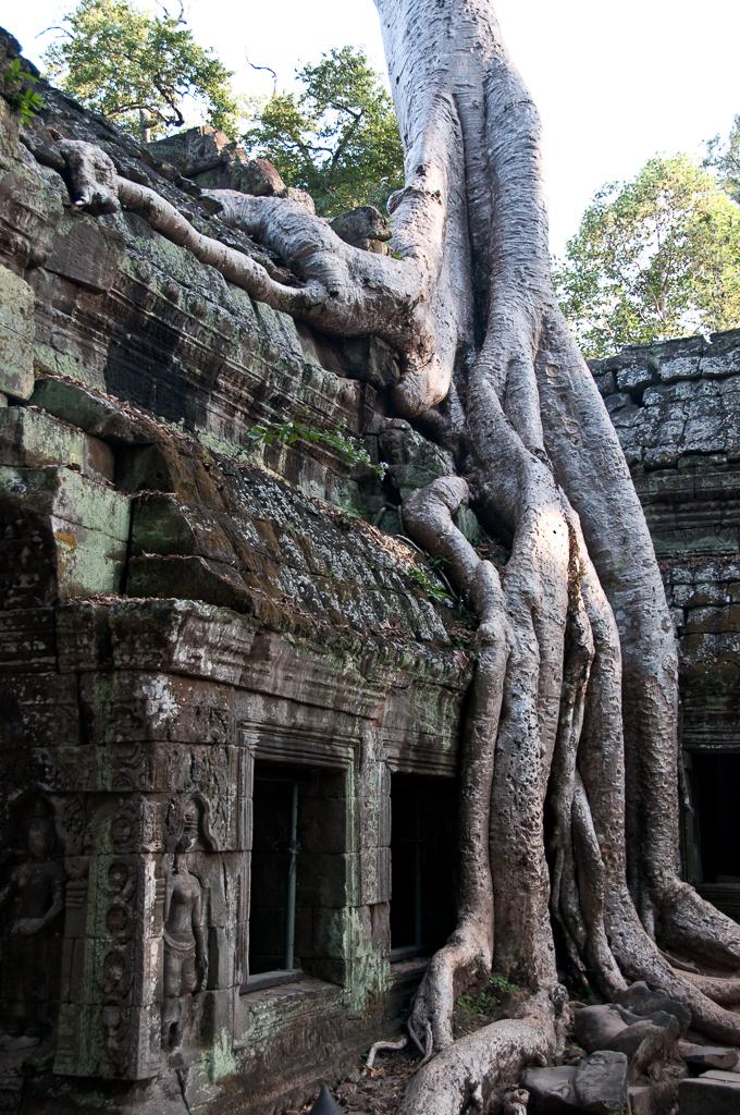 Cambodge-JN-18