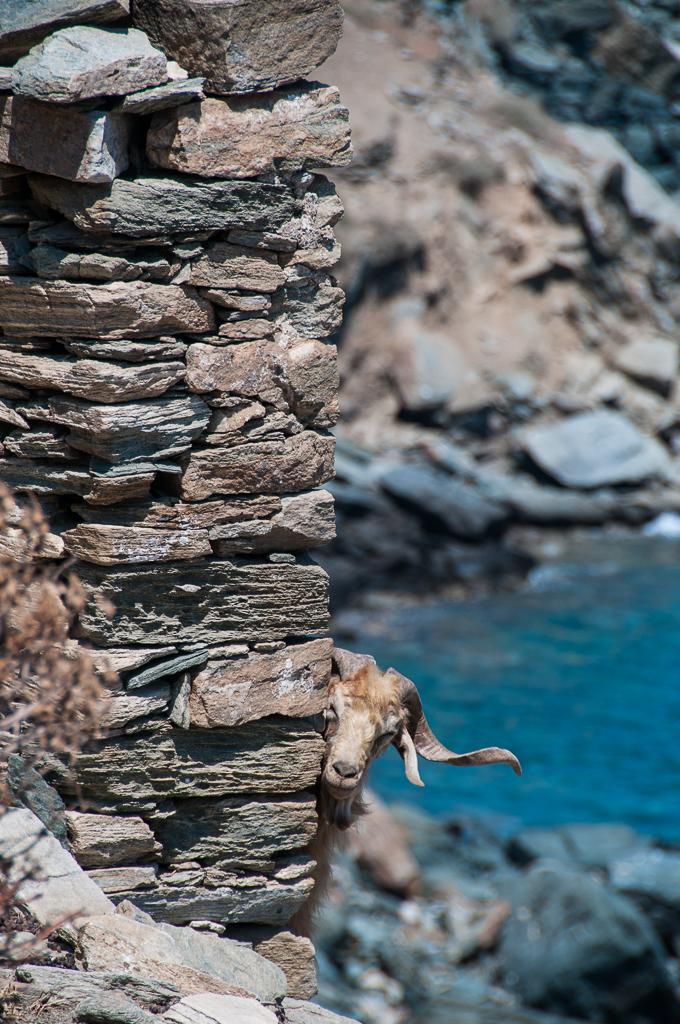 Grèce-JN-3