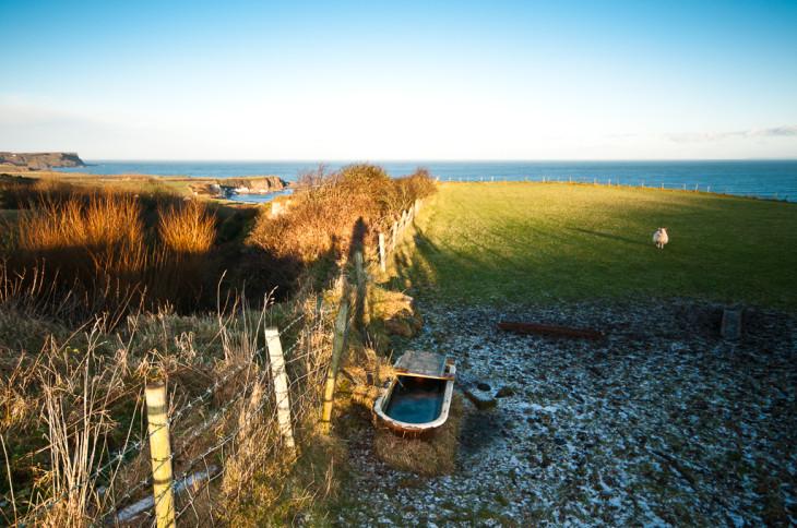 Lande nord-irlandaise - Bushmills