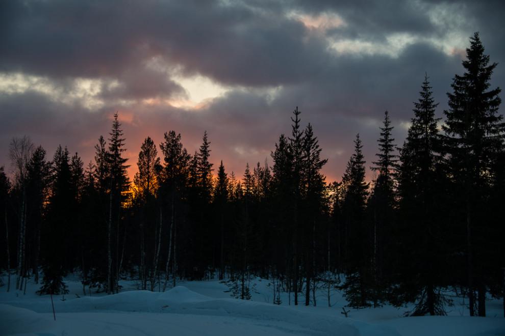 Laponie-JN-25