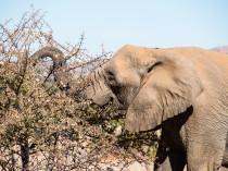 Namibie-2012-17