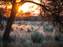 Namibie-2012-2
