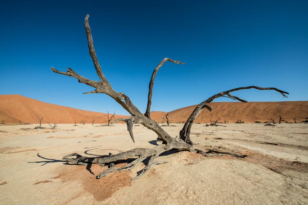 Namibie-2012-42