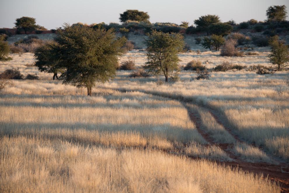 Namibie-2012-47
