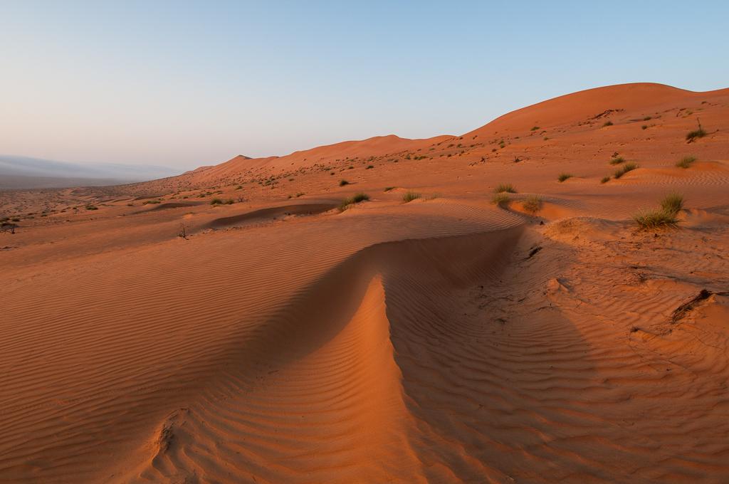 Désert de Wahiba Sands - Oman