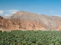 Oman-JN-19