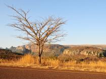 Afrique du Sud-JN-1