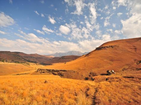 Afrique du Sud-JN-19