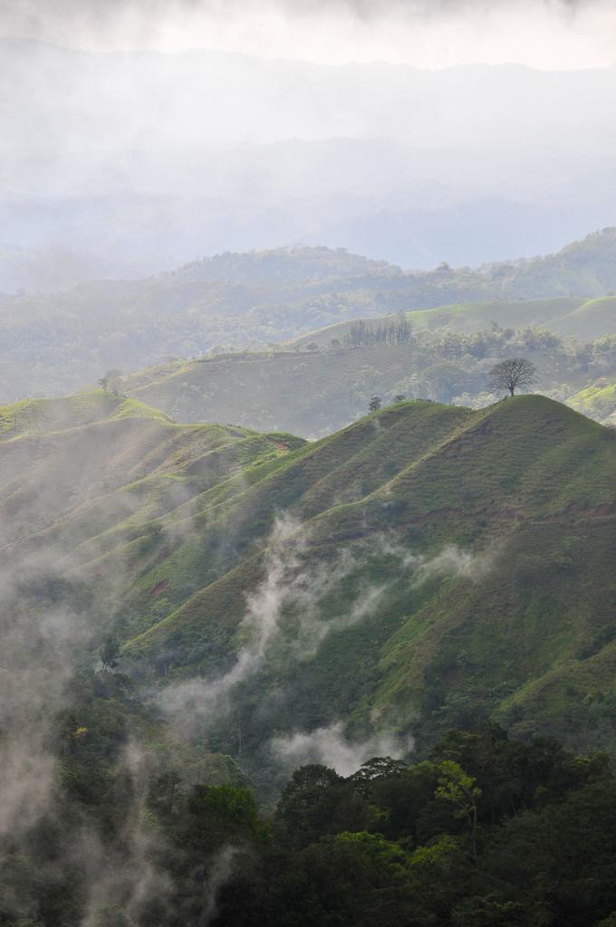 Costa Rica-JN-11