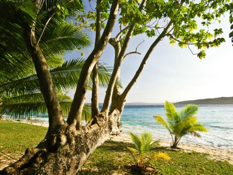 Vanuatu-JN-4