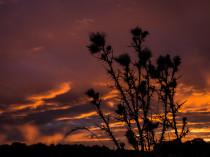 Berchères-sur-Vesgre - Coucher de soleil - 1