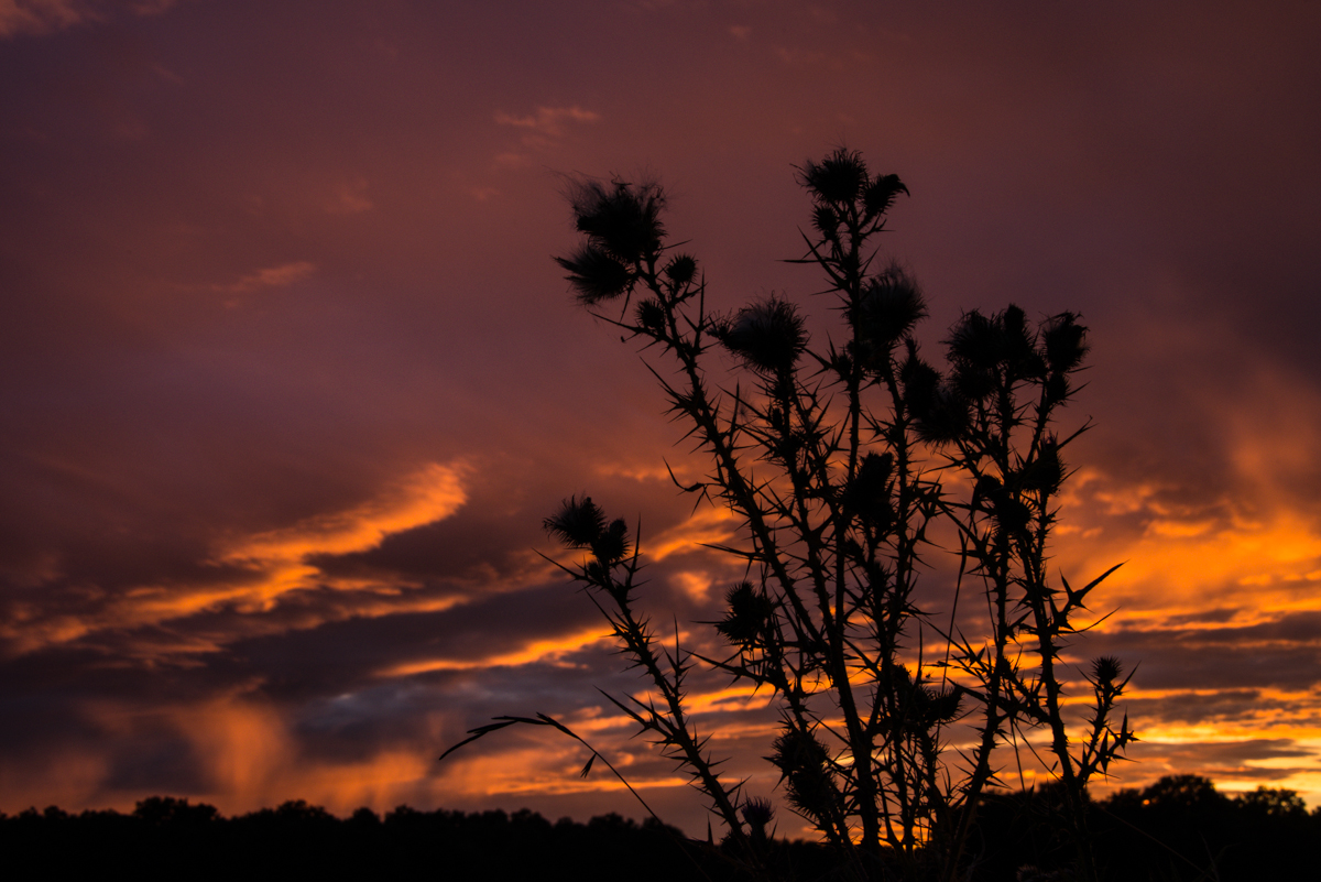 Berch res sur vesgre coucher de soleil l 39 ap ro - Le soleil se couche a quel heure ...