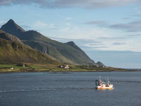 Norvège-Lofoten-2014-JN-7