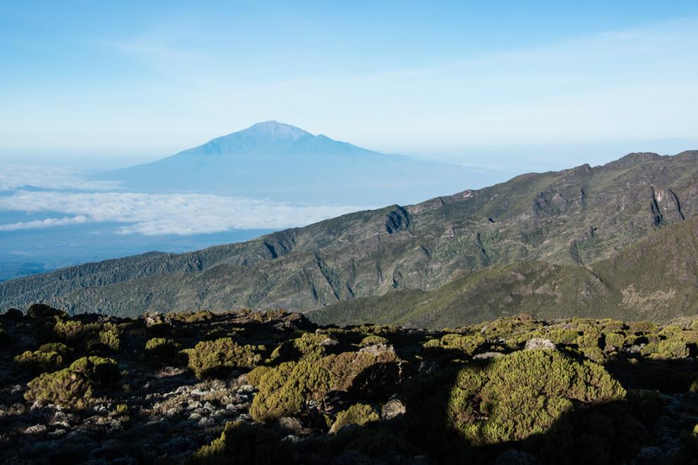 Tanzanie - Kilimandjaro-JN-10