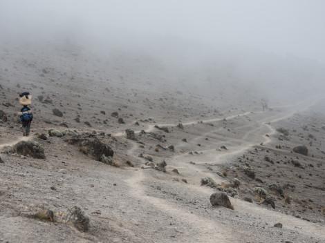 Tanzanie - Kilimandjaro-JN-16