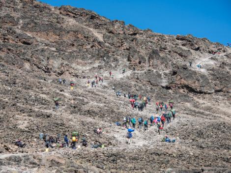 Tanzanie - Kilimandjaro-JN-19
