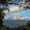 Kilimandjaro – Fenêtre sur le sommet