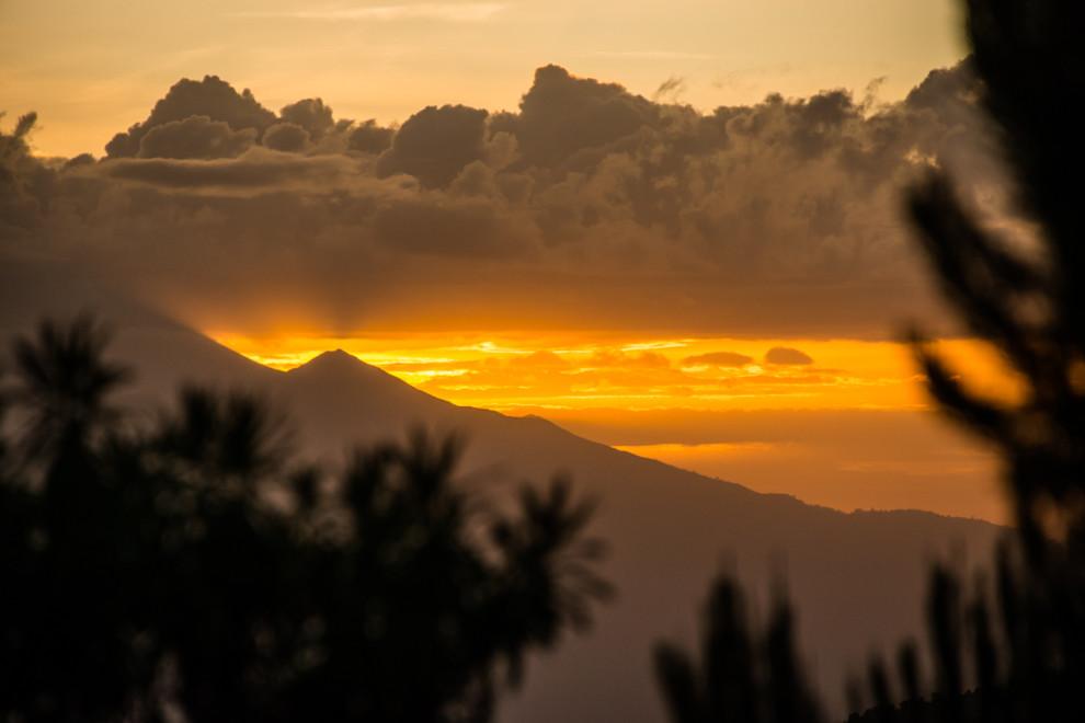 Tanzanie - Kilimandjaro-JN-4