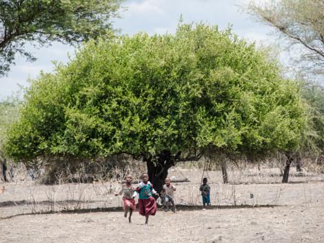 Tanzanie-Ngorongoro-JN-1