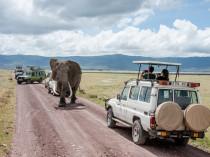 Tanzanie-Ngorongoro-JN-12