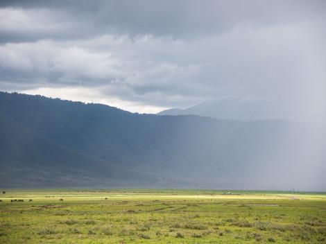 Tanzanie-Ngorongoro-JN-20