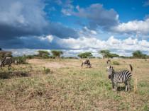 Tanzanie-Ngorongoro-JN-6