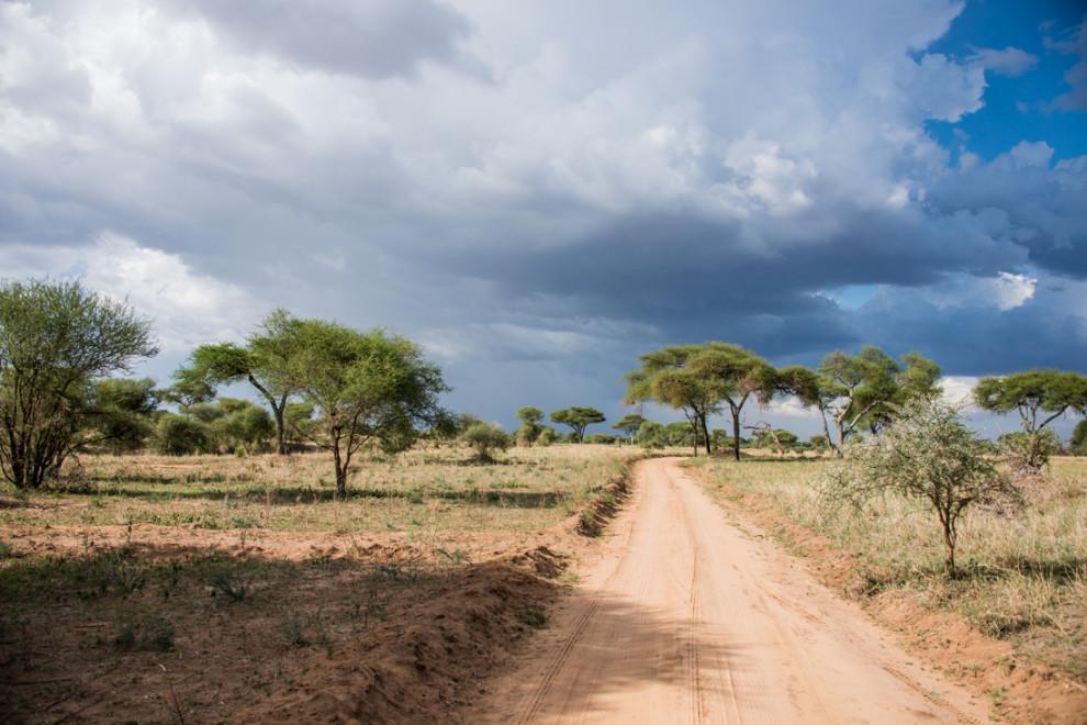 Tanzanie-Ngorongoro-JN-7