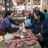 Luang Prabang – Pied de cochon