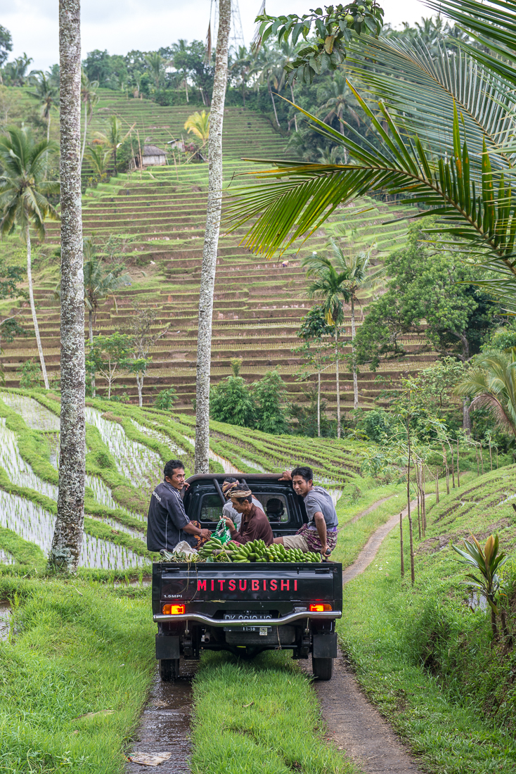 Bali-JN-19