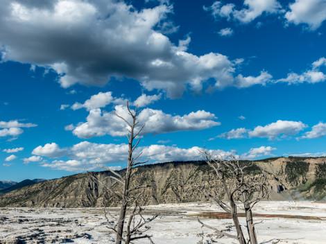 USA-Yellowstone-JN-22